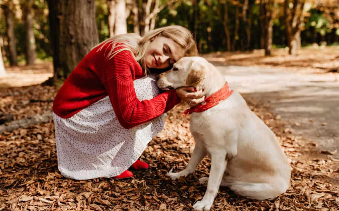 Come aiutare un animale domestico in difficoltà